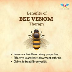 """""""Bee Venom Therapy"""" or """"Apitherapy"""" has been practised over the thousands of years and the belief in its healing power was established by the ancient Greek therapists and Egyptians who came across its benefits of easing the pain of the people.  #BeeTherapy #bees"""
