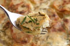 Garlic & Herb Potato Gratin - the secret is Boursin cheese :)
