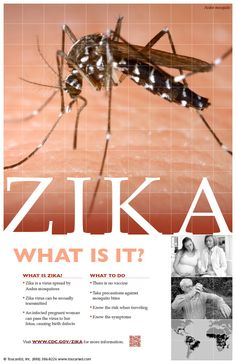What is Zika? An informational poster kit gives information about mosquito-borne diseases and how people can protect themselves.