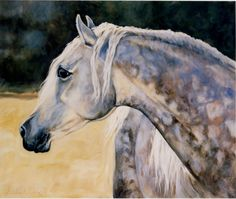 Almost looks like a photo. I love the blue highlighting the gray dapples. By Deborah Day. Courtesy of Jack Rockwell. Horse Pictures, Art Pictures, Photos, Watercolor Animals, Watercolor Art, Equine Art, Horse Art, Beautiful Horses, Artist At Work
