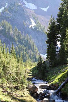 Green Landscape, Fantasy Landscape, Bergen, Natural Structures, Nature Pictures, Landscape Pictures, Nature Images, Central Oregon, Beautiful Places To Visit