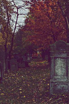 Damp autumn graveyard walks