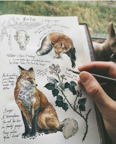 fox, art, and drawing image Art Inspo, Kunst Inspo, Inspiration Art, Sketchbook Inspiration, Sketchbook Ideas, Art And Illustration, Landscape Illustration, Art Sketches, Art Drawings