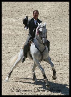 Oxidado - Working Equitation