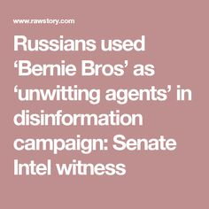 Russians used 'Bernie Bros' as 'unwitting agents' in disinformation campaign: Senate Intel witness