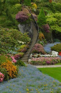 #Stairs #Garden