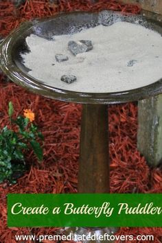How to Make a Butterfly Puddler for your garden! #butterflies
