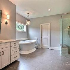 Transitional - Bathroom - Sherwin Williams Light French Gray