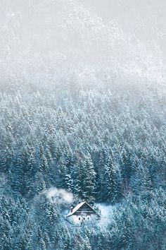 Winter Landscape // Cathy Blampey