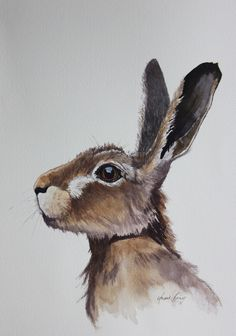 Hares are absolutely my favourite subject to paint, but you may have already guessed that! It's very peculiar but if I haven't painted them for a while each group takes on a diff… rabbit painting water colors Original Hare watercolours Animal Paintings, Animal Drawings, Art Drawings, Bunny Drawing, Bunny Art, Watercolor Artwork, Watercolor Animals, Hare Pictures, Hare Illustration