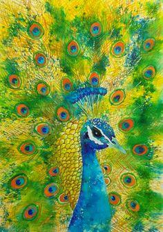 "Peacock. 11""x15""(28x38 cm). www.nadjasart.com #brusho #ostaakvarelli"