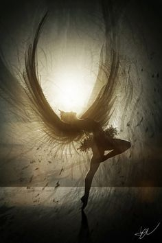 The Harpy's outline was wondrous as she spread her wings against the crisp rays of the rising sun.