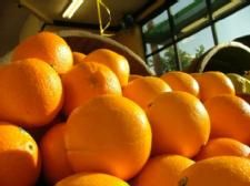 Eating food high in vitamin C may reduce risk of stroke