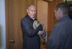 Russian President Vladimir Putin took time out from his busy schedule diving to the bottom of the sea and meeting Steven Seagal to pet a cat while in the Siberian region of Khakasia on Friday. | Putin Cuddles Cat After Obama Meets Dog, Setting Off Cold War-Style Pet Race - BuzzFeed News