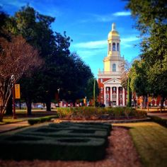 It's not even possible to get tired of #Baylor's gorgeous campus. #SicEm