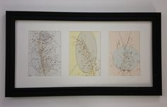 Framed Pressed Botanical Triptych  Grasses by MyStoningtonGarden, $60.00