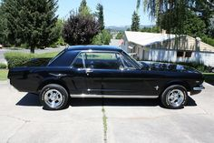 '64 1/2 Mustang. *Sigh* The husband used to have one just like this one.