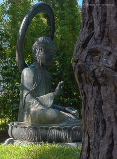 Buddha in the Japanese Tea Garden, San Francisco, USA