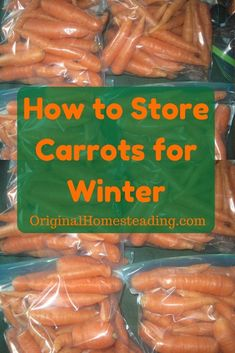 Learn How to keep all your little fingerling carrots tasting fresh and crunchy all winter long......Garden Fresh and So Easy to Store!
