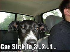 Car Sick in 3...2...1...