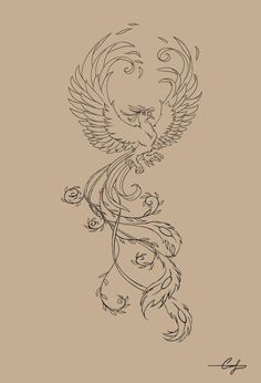 I've decided my Harry Potter themed tattoo will be of Fawkes, Dumbledore's pheonix!