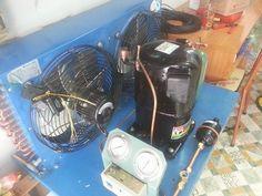 Lắp đặt kho lạnh bảo quản chè