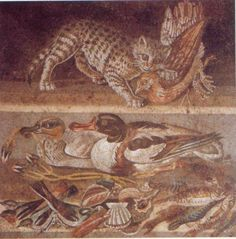 Creeping Cat mosaic from the House of the Faun. This is an extremely well detailed mosaic from the wings of the atrium that were out of sight most of the time. The fact that this was found in location suggests the owner of this house was very rich.