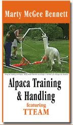 Useful Items: Llama Books & Alpaca Books Alpacas, Training, Friends, Books, Animals, Amigos, Libros, Animaux, Boyfriends