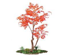 artificial maple indoors spacegreen Greenery, Trees, Indoor, Interior, Tree Structure, Wood