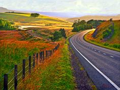 Evening sunlight on the A7 between Ashkirk and Selkirk, Scotland  by Wally Turnbull