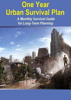 One Year Urban Survival Plan