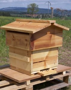 Instructions on building your own bee hive at home. They're in a series of several posts so you have scroll through them, but it's pretty cool.
