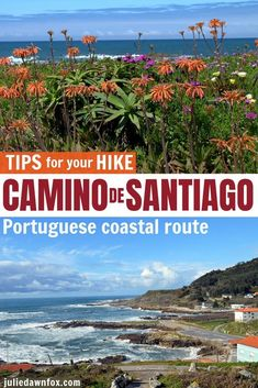 The Coastal Portuguese Camino de Santiago pilgrim route - stretching from Porto, Portugal to Santiago de Compostela, Spain - is an absolute must for your hiking bucket list. This expert insider guide tells you all you need to know before your walk: which stages are by the ocean, how busy the route is, what to look out for on the way...read on for YOUR essential tips! #hikingvacations #traveltips #Europebucketlisthikes #CaminodeSantiagoPortugal #pilgrimage #Caminocoastalroute #Portugalhikes