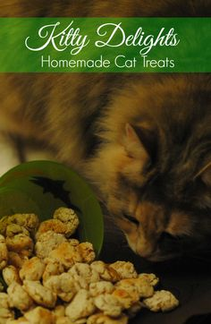 These cat treats are simple to make and will have your fur baby oh so happy!  Only 3 ingredients and less than 20 minutes to make!