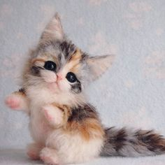 Cute Needle felting wool cute kitten (Via @rikka.ik)