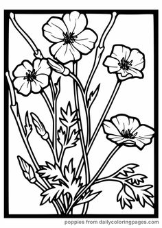 flowers coloring pages color printing flower coloring pages free 56