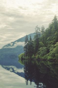 Quiet morning in the pacific northwest. glassy lake, dense forests and foggy skies
