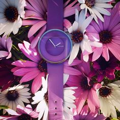 Summer is coming 😍 Summer Is Coming, Smart Watch, Watches, Fashion, Moda, Smartwatch, Wristwatches, Fashion Styles, Clocks