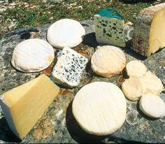 Plateau de fromages aveyronnais