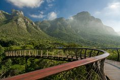 The Kirstenbosch Centenary tree canopy walkway in Cape Town, South Africa. It was designed by Mark Thomas Architects. The mountains in the background are part of Table Mountain, looking totally different from this angle.  Jonathan Reid   |    Travel   |  Architecture   |   Facebook  |
