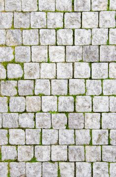 flooring texture Stone pavement with green grass. Texture or background. Paving Texture, Brick Texture, Tiles Texture, Stone Floor Texture, Ceramic Texture, Green Texture, Texture Sketchup, Stone Decoration, Stone Pavement