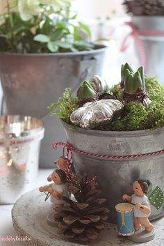 Cute Christmas amaryllis vignette! I love it when random things come together like this.