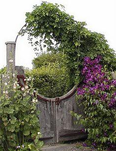 Through the garden gates