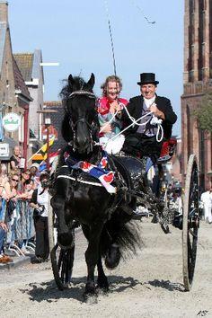 Het Friese paard. Een paard met een gewélidge uitstraling.
