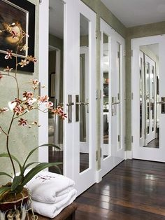 Update Closet Doors.  Mirrored doors, dark wooden floors, and an orchid! Pretty!