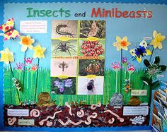 Minibeast and insect display Teaching Displays, Class Displays, School Displays, Classroom Displays, Teaching Ideas, Minibeasts Eyfs, Primary Science, Preschool Science, Reception Class