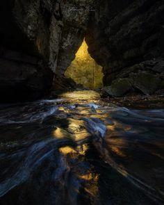 Follow The Light - )
