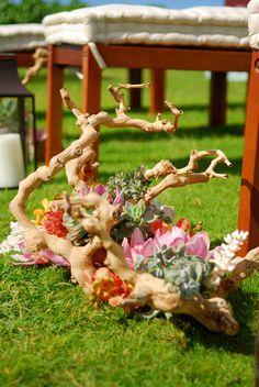 #Ceremony decor @aisle decor #Hawaii wedding #organic