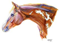 Colorful Horse Art Print of Watercolor Painting Gift for the Horse Lover 11x14 $25.00