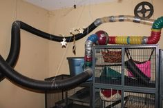 home+made+ferret+toys | jealous of all these DIY ferret cages/toys. I...